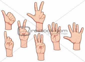 Hands and numbers. Vector isolated objects.
