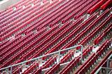 stadium_rows(35).jpg