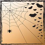 Spider Web and Bats