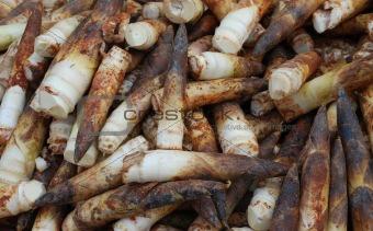 Peeled bamboo