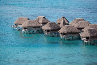 South Pacific water bungalows