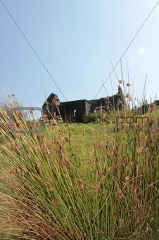 old abandoned irish cottage