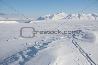 Arctic winter - tracks on the snow