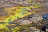 Arctic summer landscape - green tundra