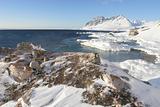 Typical Arctic landscape