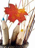 coloured pencils in basket with leaf
