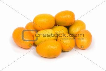 Cumquat  (Fortunella margareta)