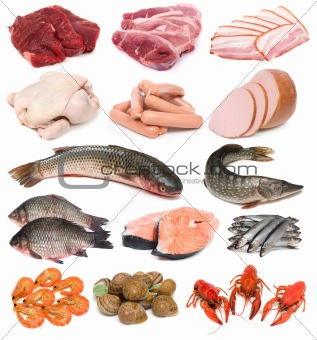 Meat  fish and seafood Is Fish Meat