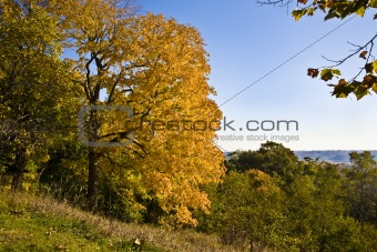 Autumn Overlooking the River Valley