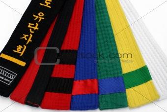 Martial Arts Belts 1