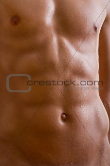 belly naked male body