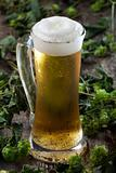 beer in a glass and hop