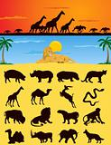 African animals