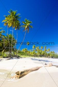 Cumana Bay, Trinidad