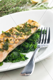 grilled salmon with herbs on fried spinach