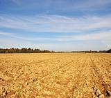 Farm field in autumn