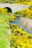 bridge near Armadale Bay, Highlands, Scotland