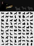 Collection of dogs2