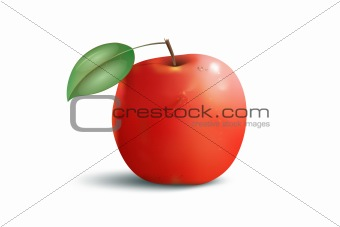 apple red with leaf