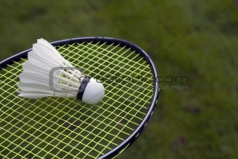 Green grass badminton