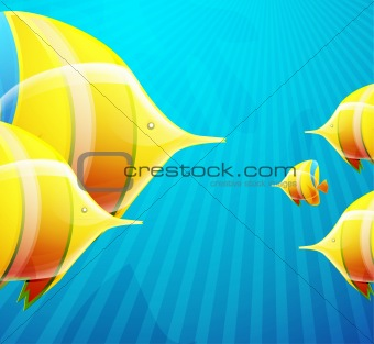 Fish illustration for your design