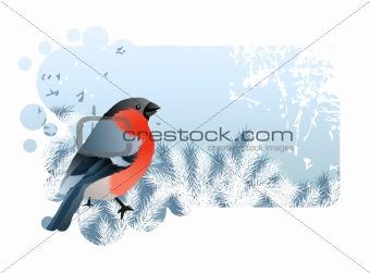 Blue Christmas frame with bullfinch