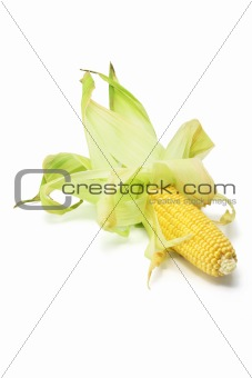 Corn Cobs 