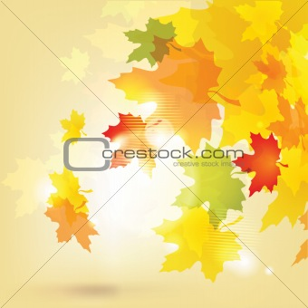 Autumn background with leaves and sun / eps10