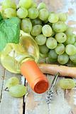 bottle of white wine, grapes, and a corkscrew on a natural background