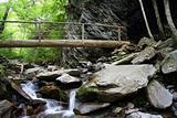 Alum Cave Bluff Trail