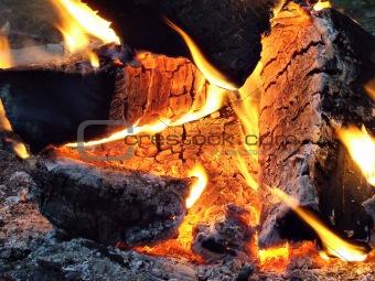 Campfire Close Up