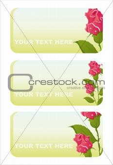 beautiful roses banners