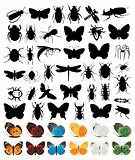 Silhouettes of insects2