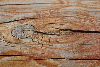 A piece of wood with the top out of focus for copyspace