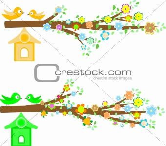 branch of a tree with flowers isolated on white background