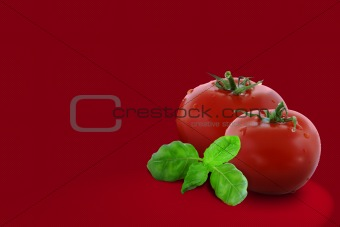Two tomatoes with green basil