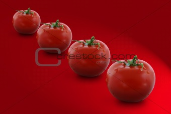 Four tomatoes on red background