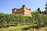 Vineyards and castle of Grinzane Cavour.