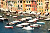 Boats floating along multicolored houses of Portofino.
