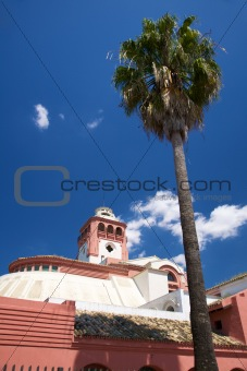 palm and pink building