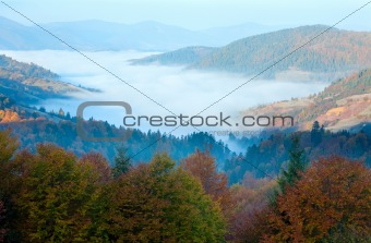 Autumn misty morning mountain valley