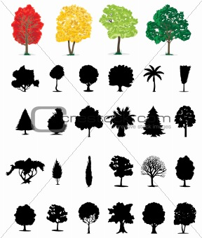 Assembly of trees2