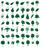 Trees icon3