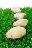 stones on the grass