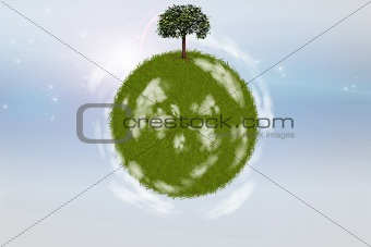 Green grass sphere with single tree