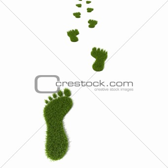 Grass footprint