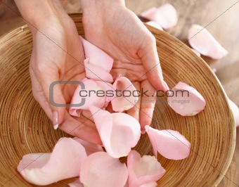 Beautiful hands of the woman and rose petals