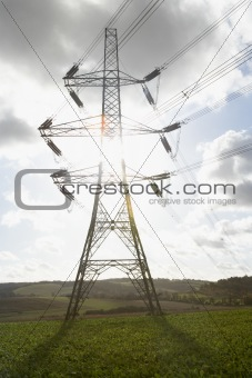 Electricity Pylons In A Paddock