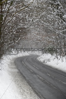 Country Road Lined With Snow And Skeletal Trees