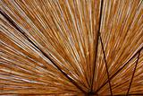 Straw umbrella texture